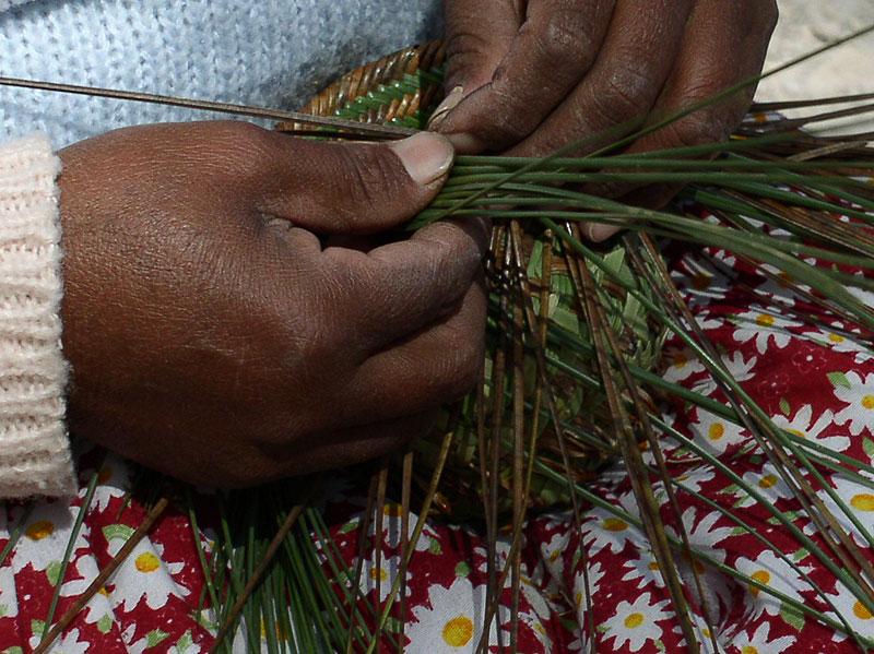 Raramuri women weaving a Pine needle basket weaving - Copper Canyon ...